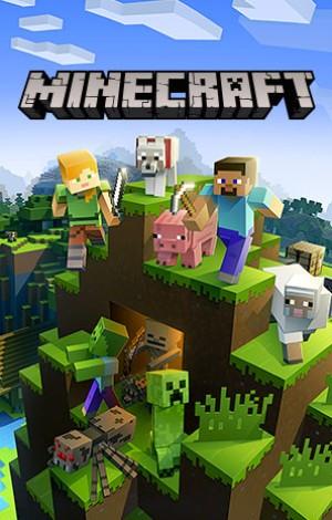 Copertina Minecraft